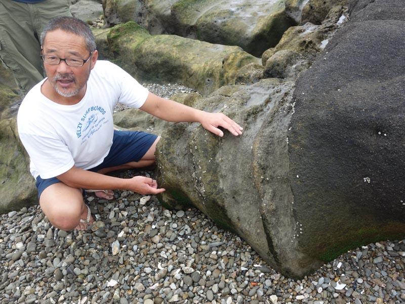 海野さんによる磯の自然観察