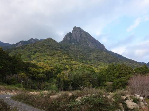 新緑萌えるモッチョム岳がお出迎え