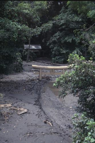 2000年の噴火で埋まってしまった椎取り神社の鳥居